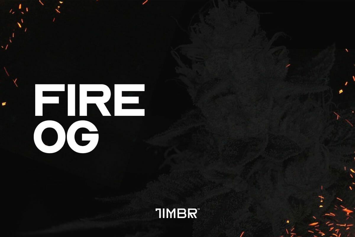 Fire OG CBD Strain | TimbrOrganics.com