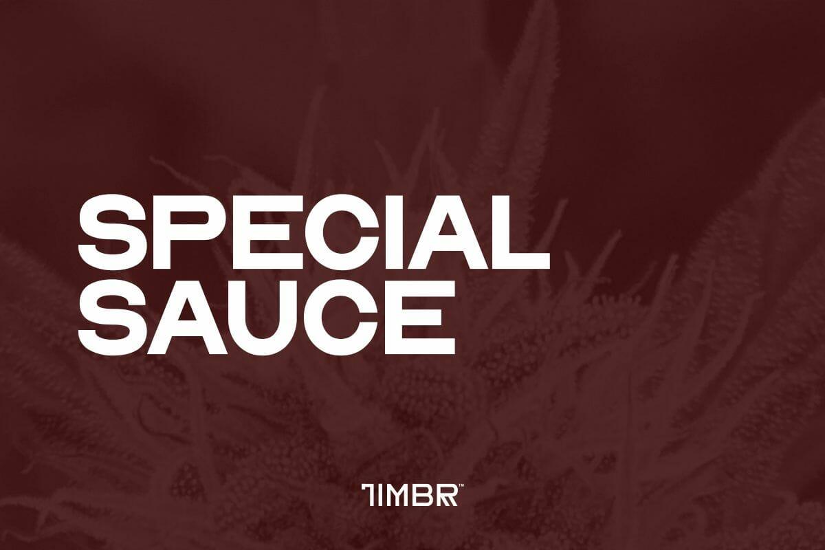 Special Sauce CBD Strain | TimbrOrganics.com