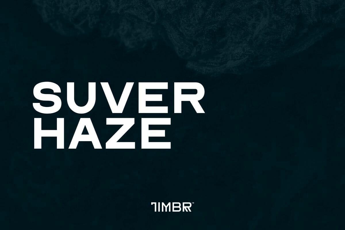 Suver Haze CBD Strain | TimbrOrganics.com