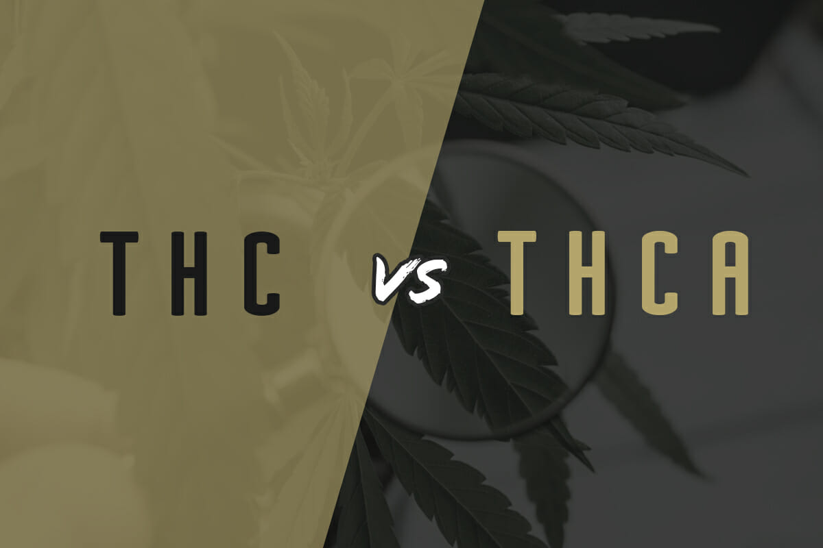 THC vs THCa: The Difference and Why It Matters